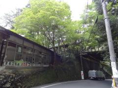 kifune2.jpg