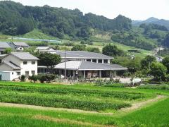 tachibanadera5.jpg