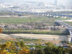 gokounomiya2.jpg
