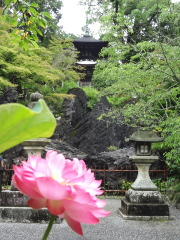 ishiyamadera4.jpg