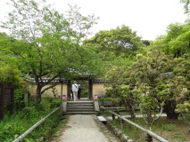 jyoruriji4.jpg
