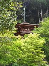 jyoruriji9.jpg