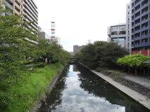 toyama16s048.jpg